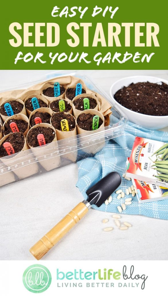 Check out our easy steps to make a DIY Seed Starter using a lettuce container, paper rolls and popsicle sticks. Make it a family activity and get everyone involved - summer is all about gardening!