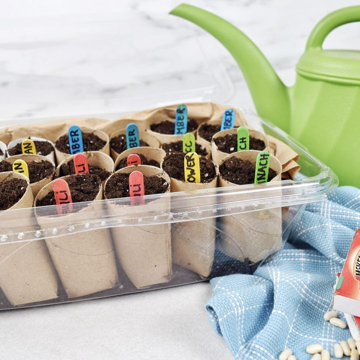 DIY Seed Starter - Start your seeds with this awesome DIY. It's simple, budget-friendly and you likely already have the materials in your craft drawer. Happy gardening!
